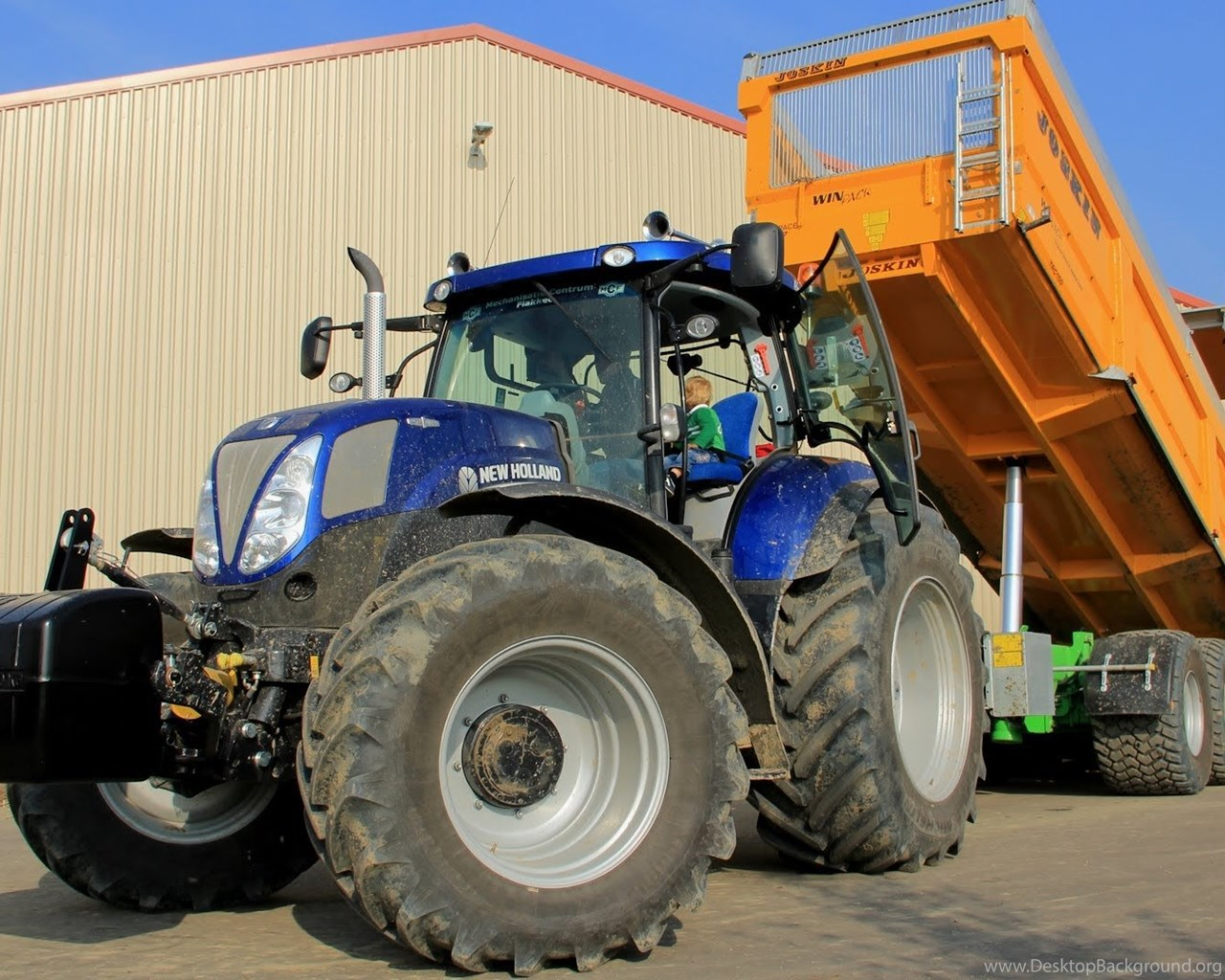 Loading Onions With Many New Hollands + New Holland T7 210 Blue