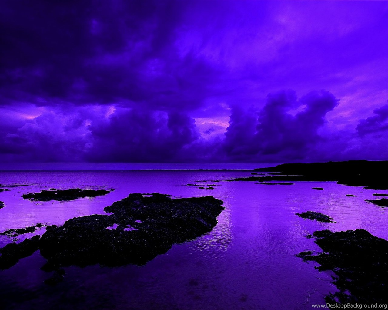 High Resolution Wallpaper: Violet Backgrounds Wallpaper, High Definition, High