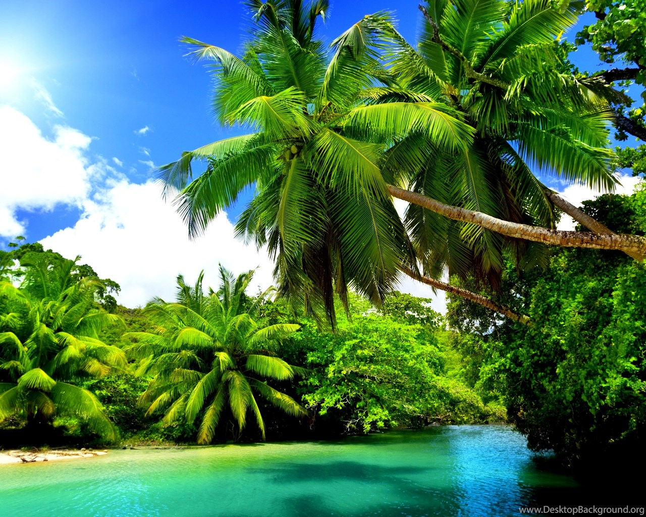 Pretty Nature Backgrounds Wallpapertag: Pretty Nature Wallpapers Full HD Nekeran.com Desktop