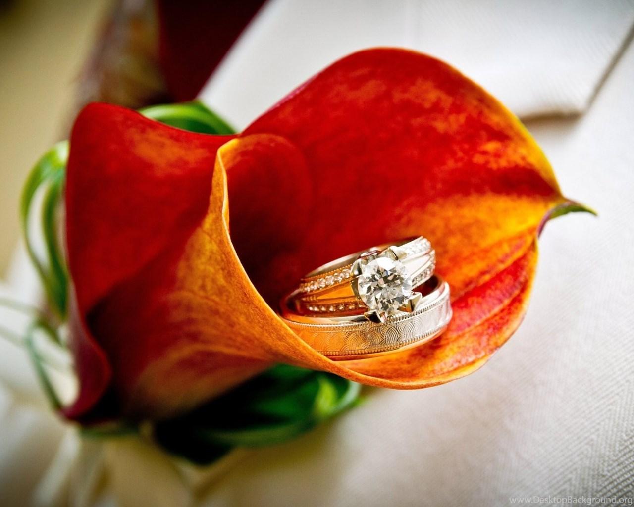 Кольца с цветами : картинки и фото кольца и цветы, скачать изображения 36