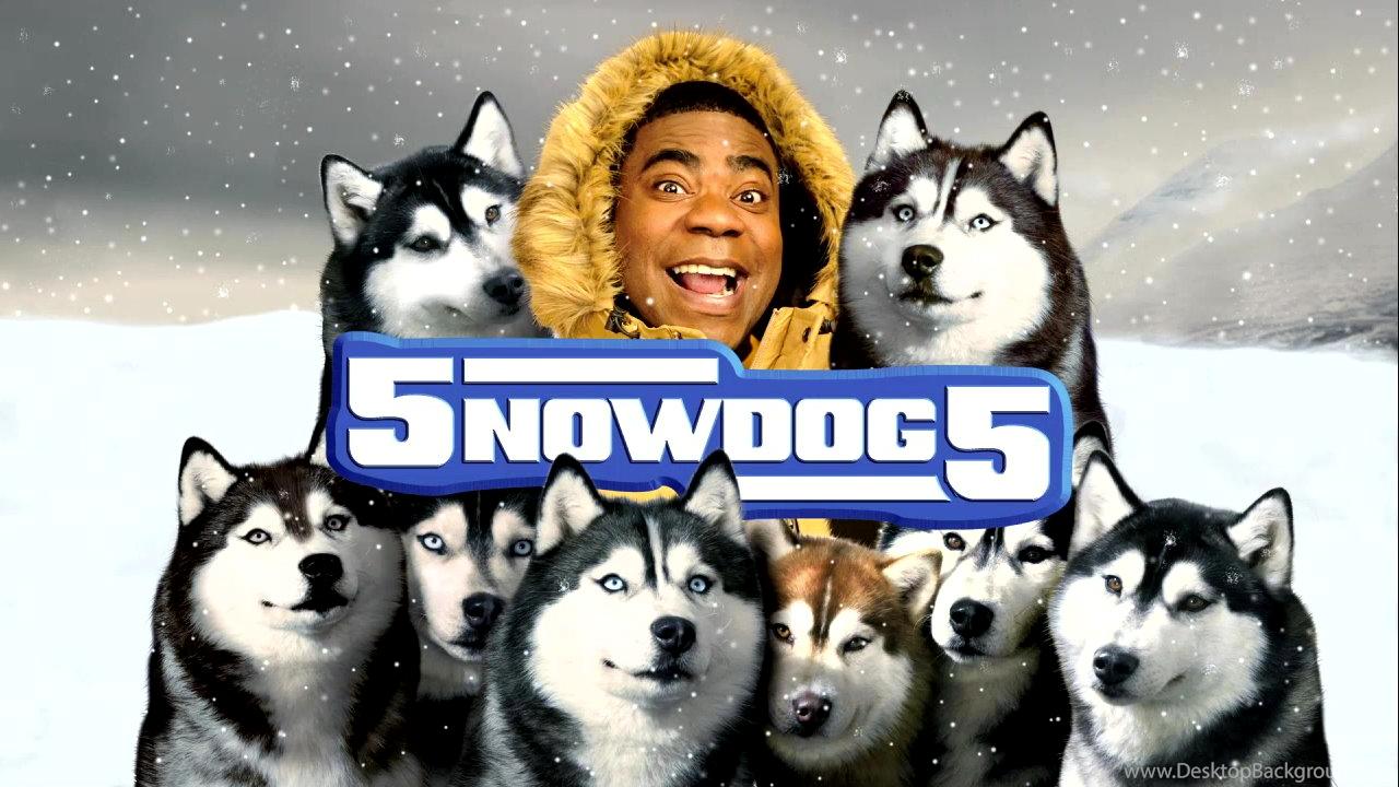 Фильм снежные псы постер