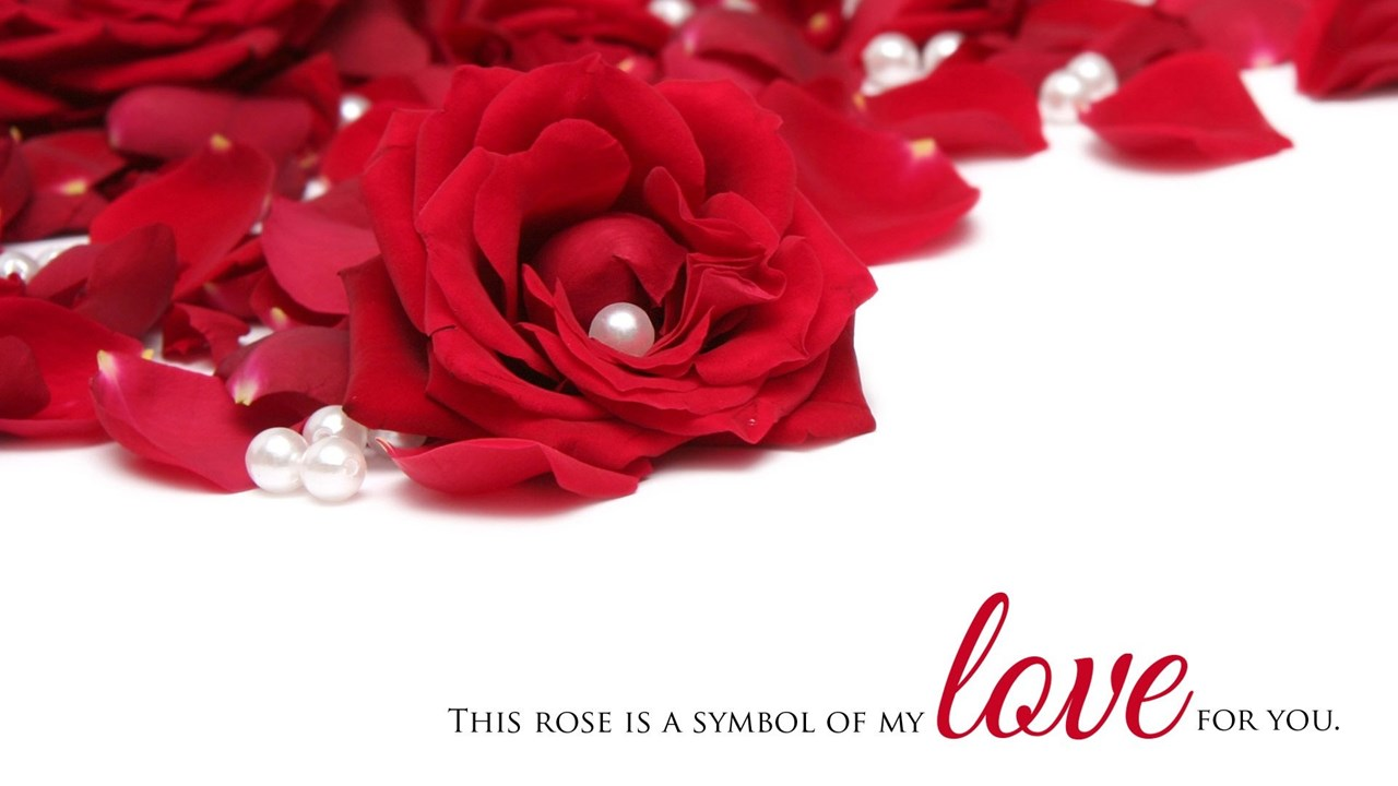 Advance Happy Rose Day 2016 Whatsapp Status Dp Wishes Images Desktop Background
