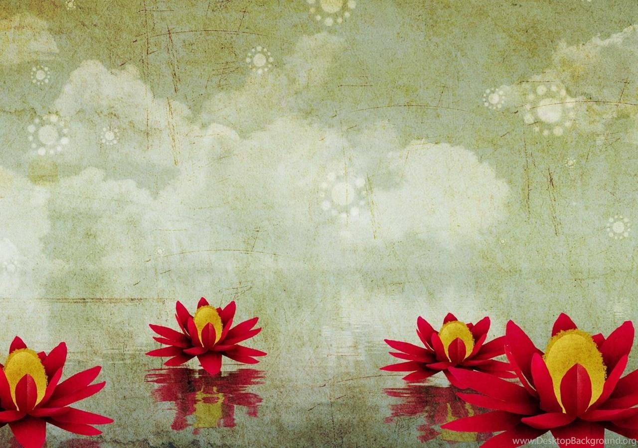 Nature Wallpapers Lotus Flower Wallpaper Computer Desktop