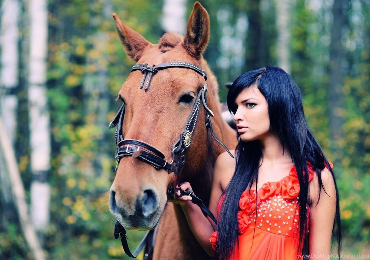Hd Wallpapers Fine Horse Animal 2013 High Resolution Hd Desktop