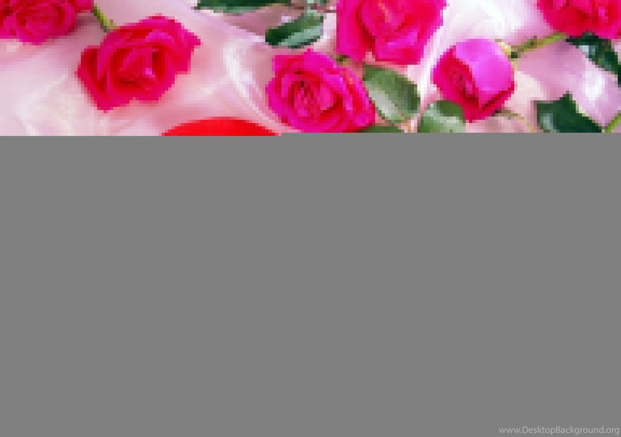 Love Rose Wallpapers Free Downloadrose Wallpaperhd Wallpapers