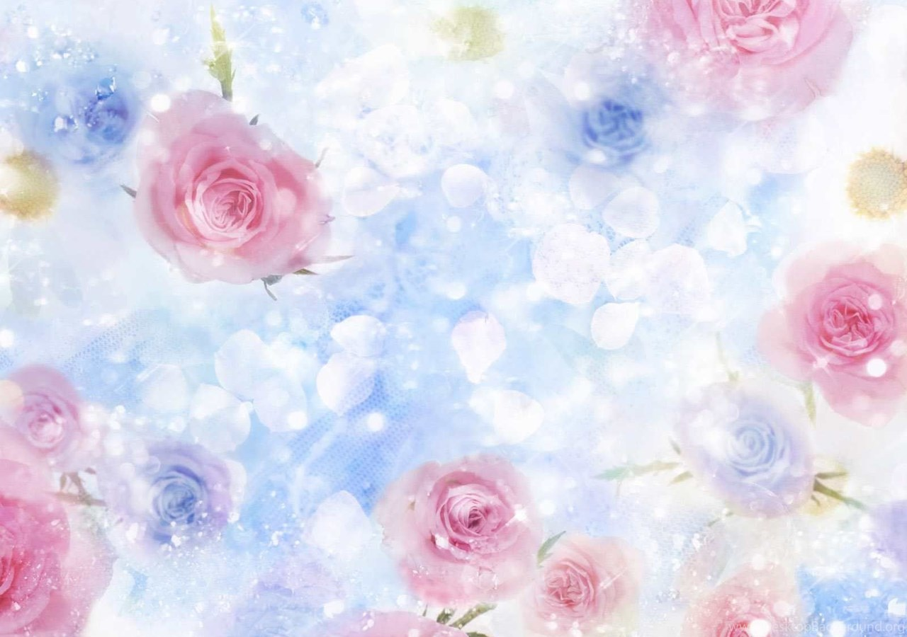 Beautiful Flowers Backgrounds Wallpapersbackgrounds Wallpapers