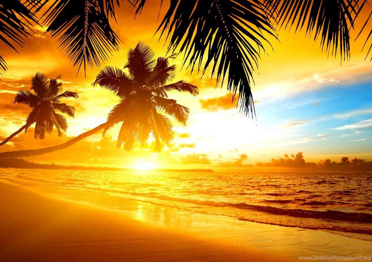 Hd Tropical Island Beach Paradise Wallpapers And Backgrounds: TROPICAL SUNSET WALLPAPER ( Desktop Background