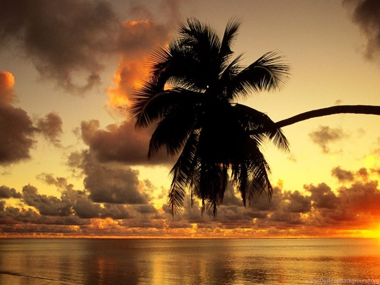 Hd Tropical Island Beach Paradise Wallpapers And Backgrounds: Tropical Island Sunset Wallpapers Wallpapers Cave Desktop