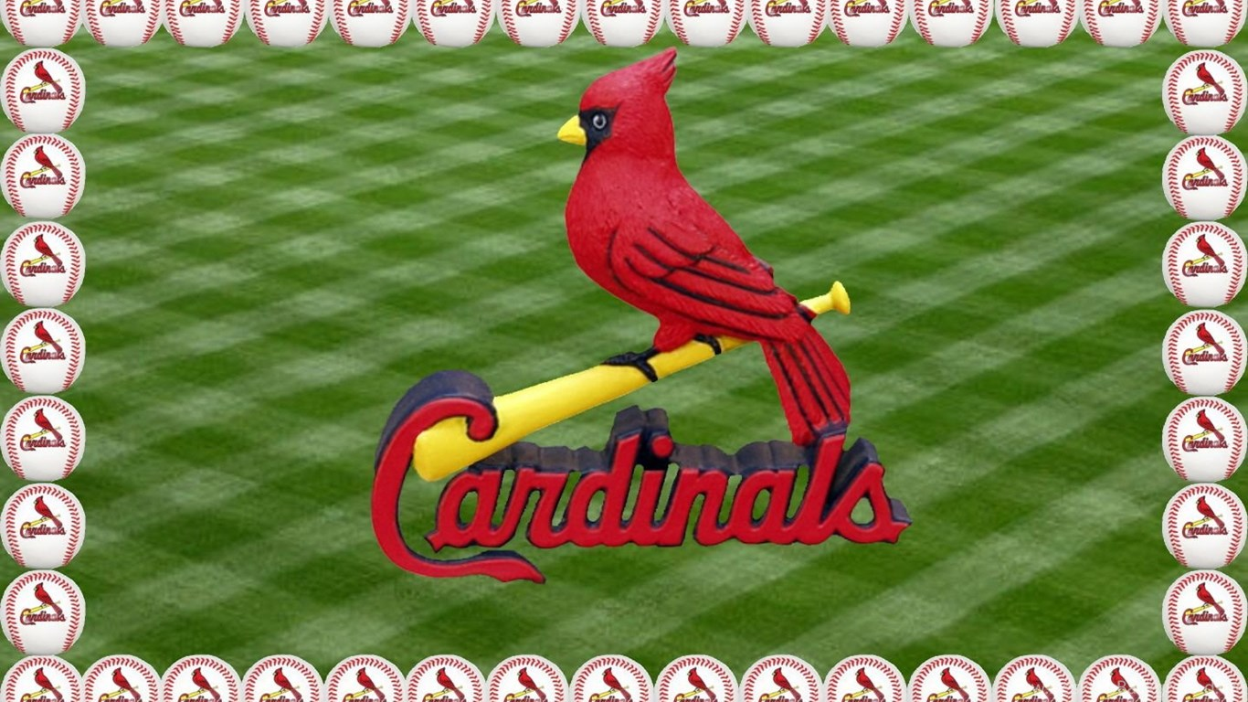 Cardinals Birds St Louis Cardinals Wallpapers Hd Wallpapers 95143