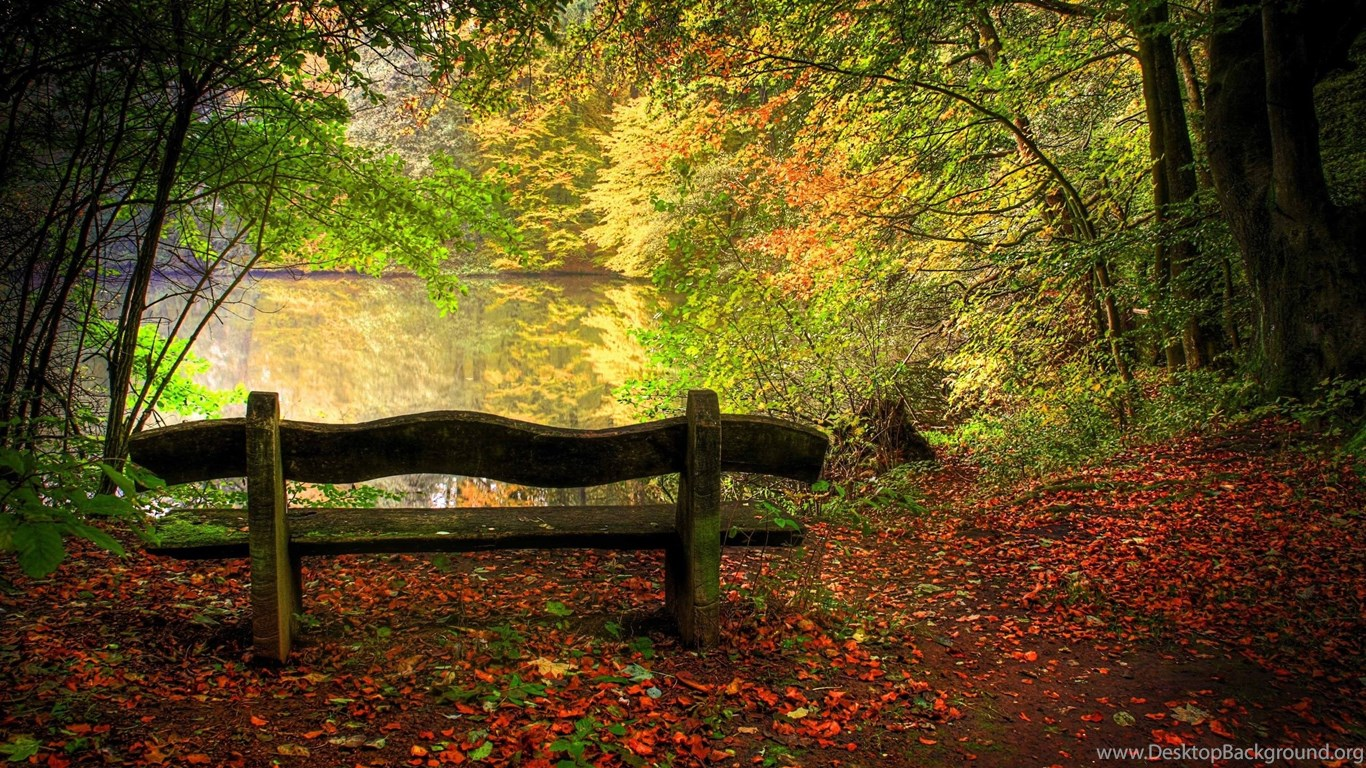 Autumn Free Wallpapers Empty Bench In Fall Scene Wallpapers