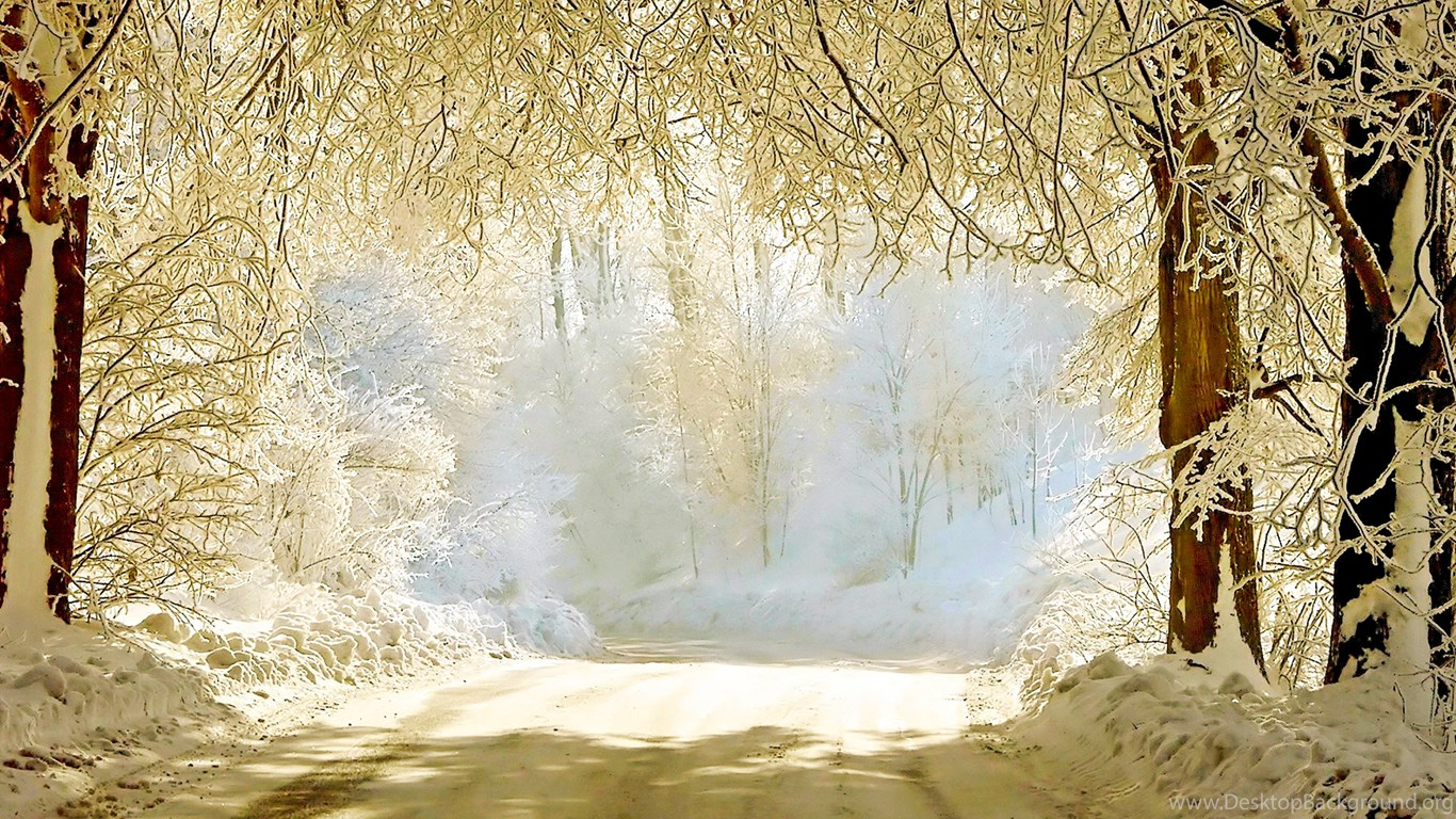 30+ Beautiful Winter Wallpapers, Backgrounds, Images Desktop Background