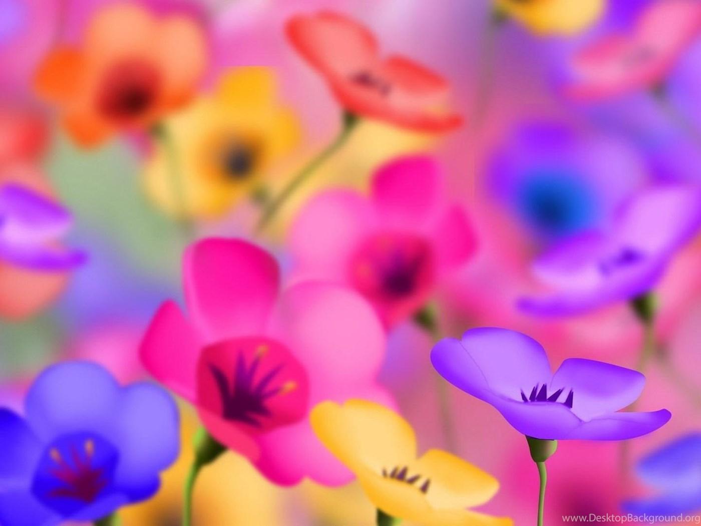Full Hd 1080p Flowers Wallpapers Desktop Backgrounds Hd Downloads