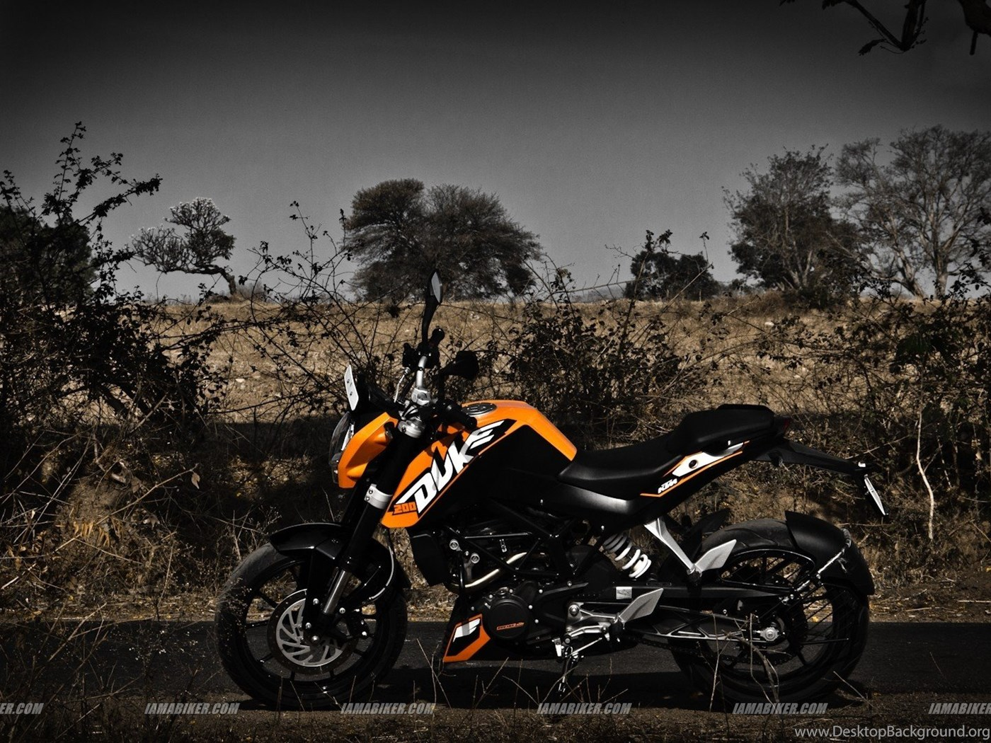 Ktm Duke Bike Click For High Resolution Hd Pics Hq Backgrounds