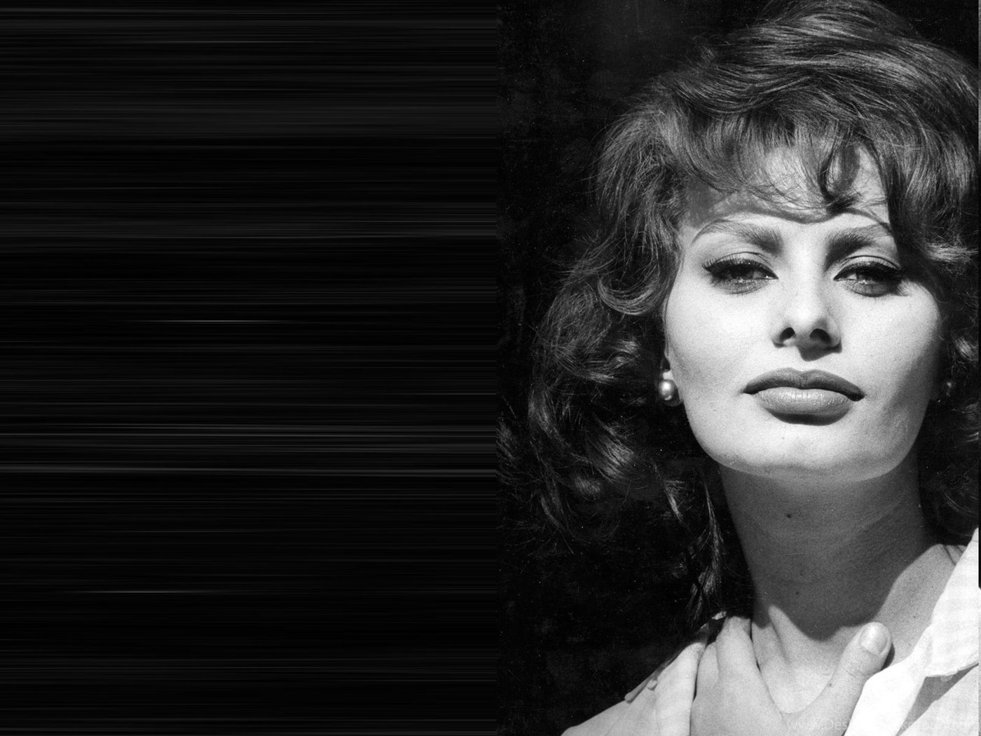 Sophia loren hd wallpapers and photos download desktop background - Wallpaper sophia loren ...