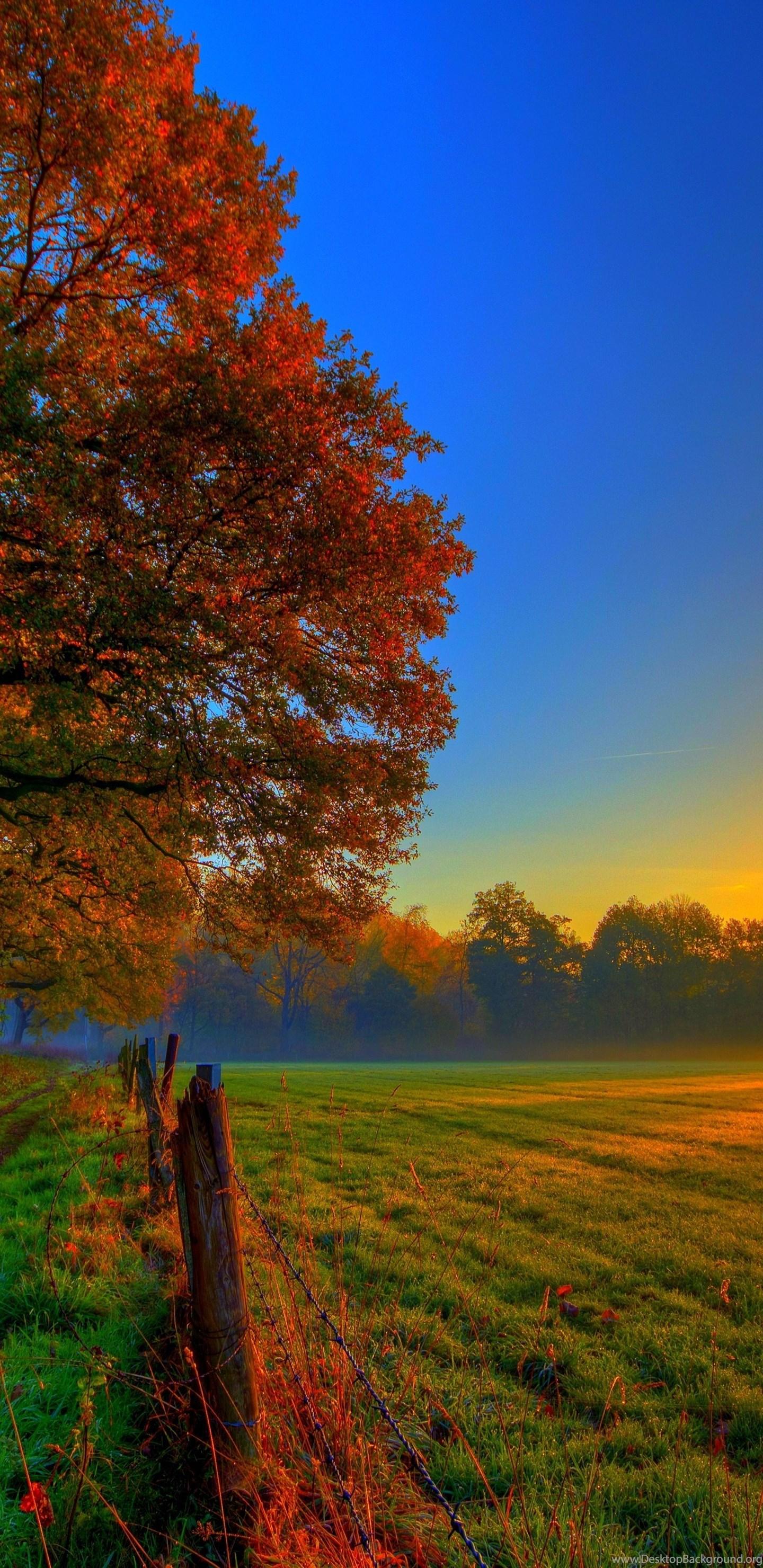 Autumn Wallpapers Best Wonderful Fullwidehd com Desktop