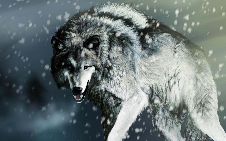 Grey Wolf Wallpaper Backgrounds New Wallpapers Desktop