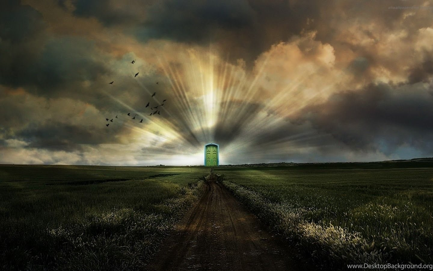 FREE PHOTOSHOP BACKGROUNDS HIGH RESOLUTION WALLPAPERS ...