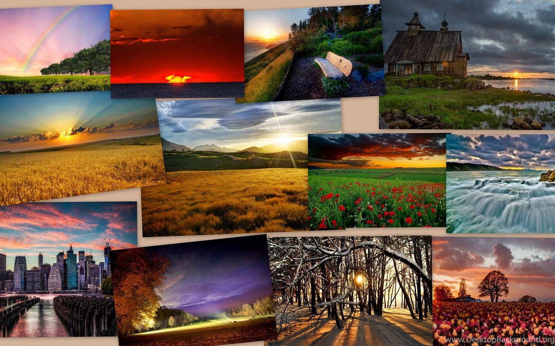 коллаж природа из фотографий идей, поиск своего
