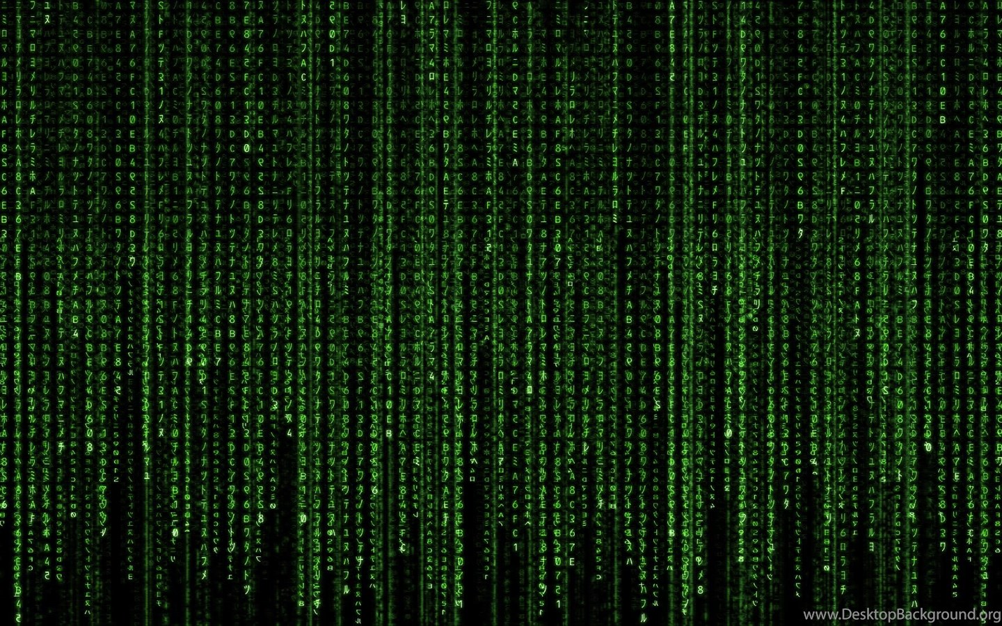 23948 Matrix Moving Free Download Hd Wallpapers Attachment