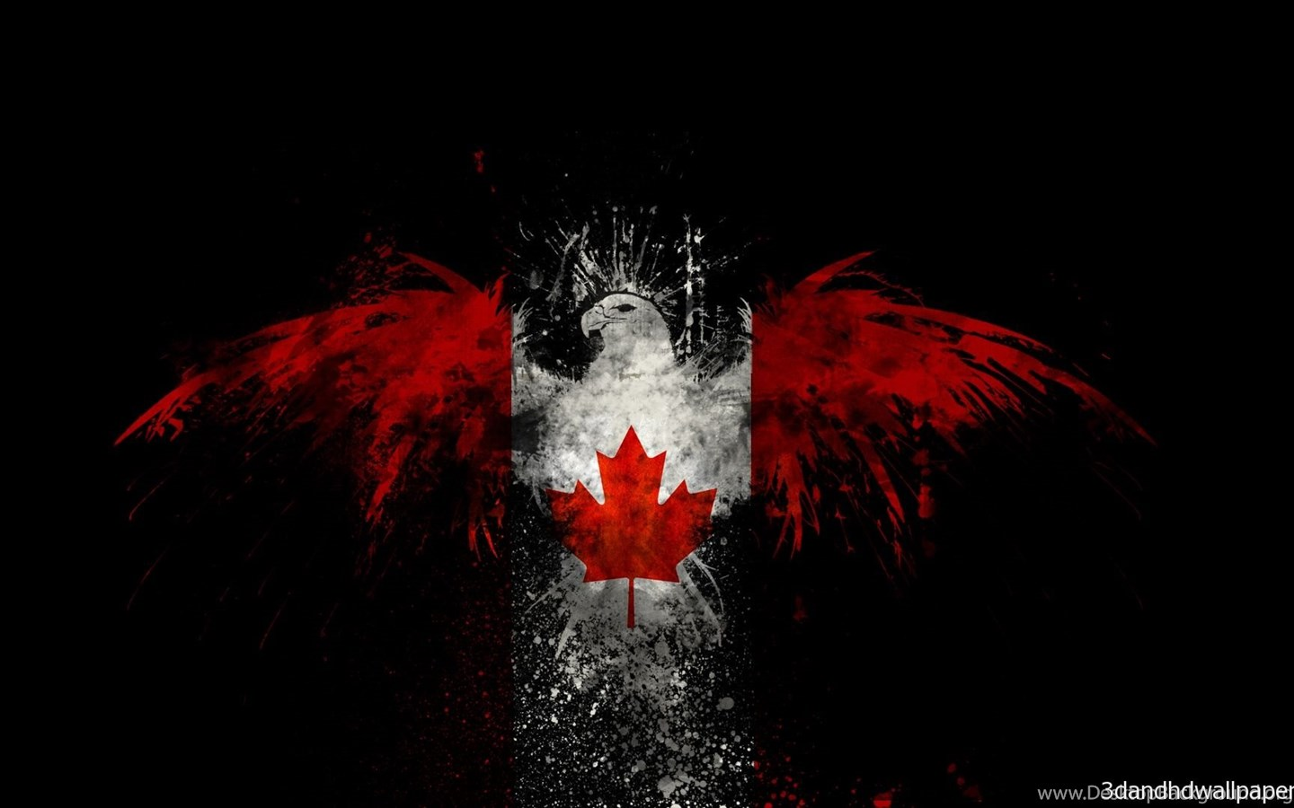 Black Backgrounds Eagle Wings Red Colour Hd Wallpapers Desktop Background