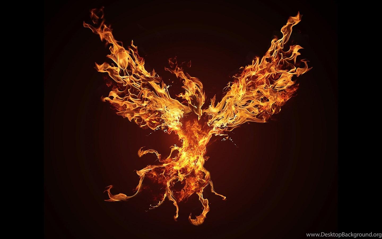 Download Dark Phoenix Wallpapers 176 2560x1440 Px High