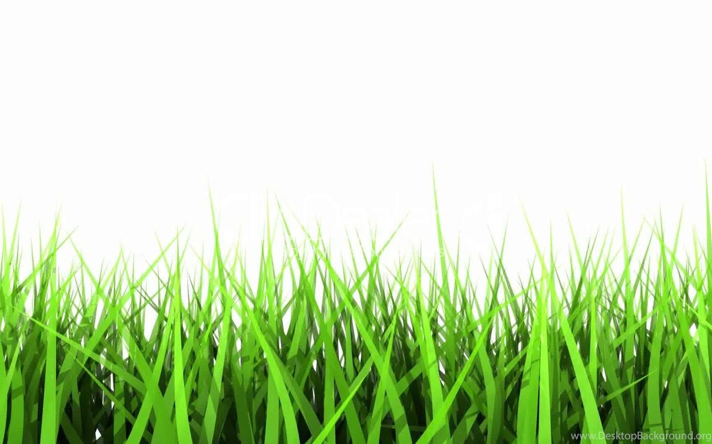 green grass background - HD1440×900