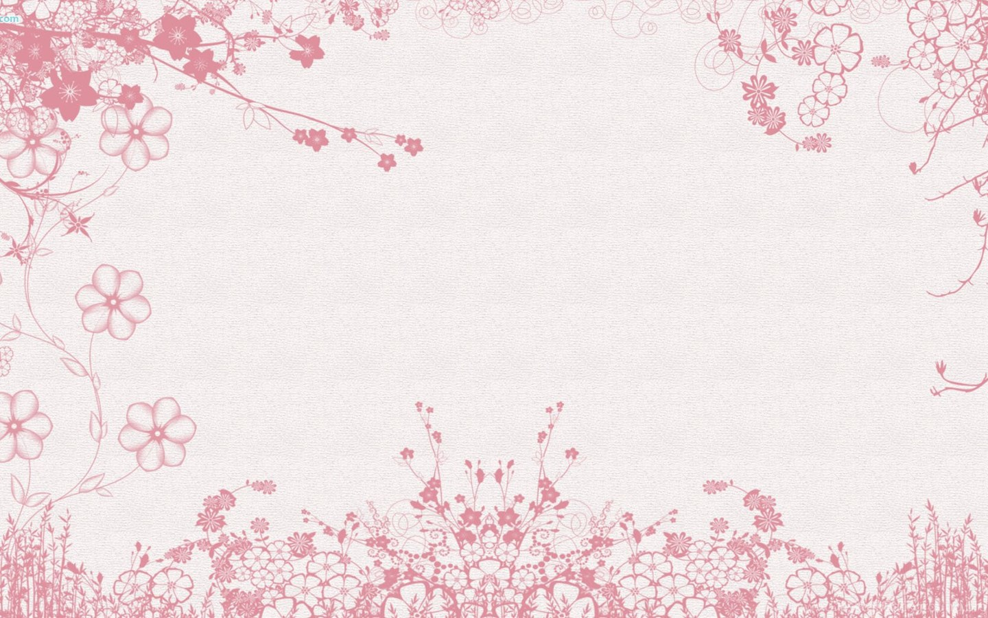 White Pink Flowers Wallpapers Desktop Background