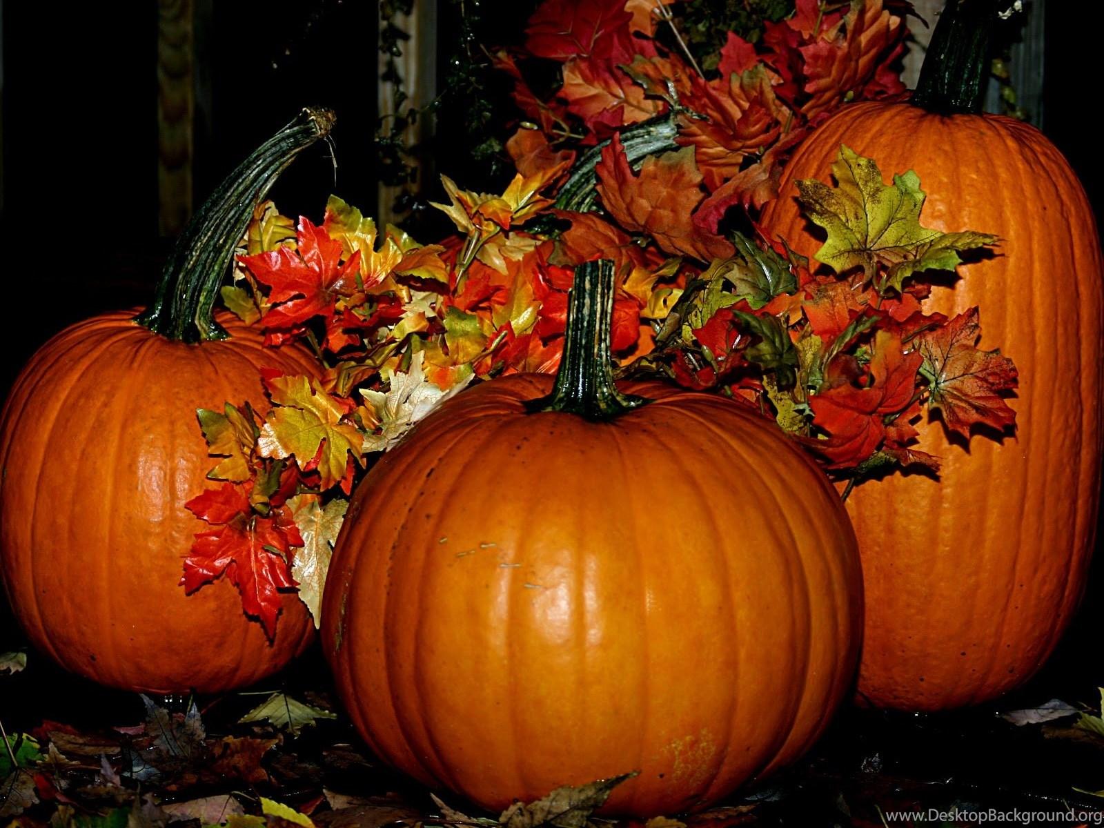 Fall Halloween Wallpapers High Definition Desktop Background
