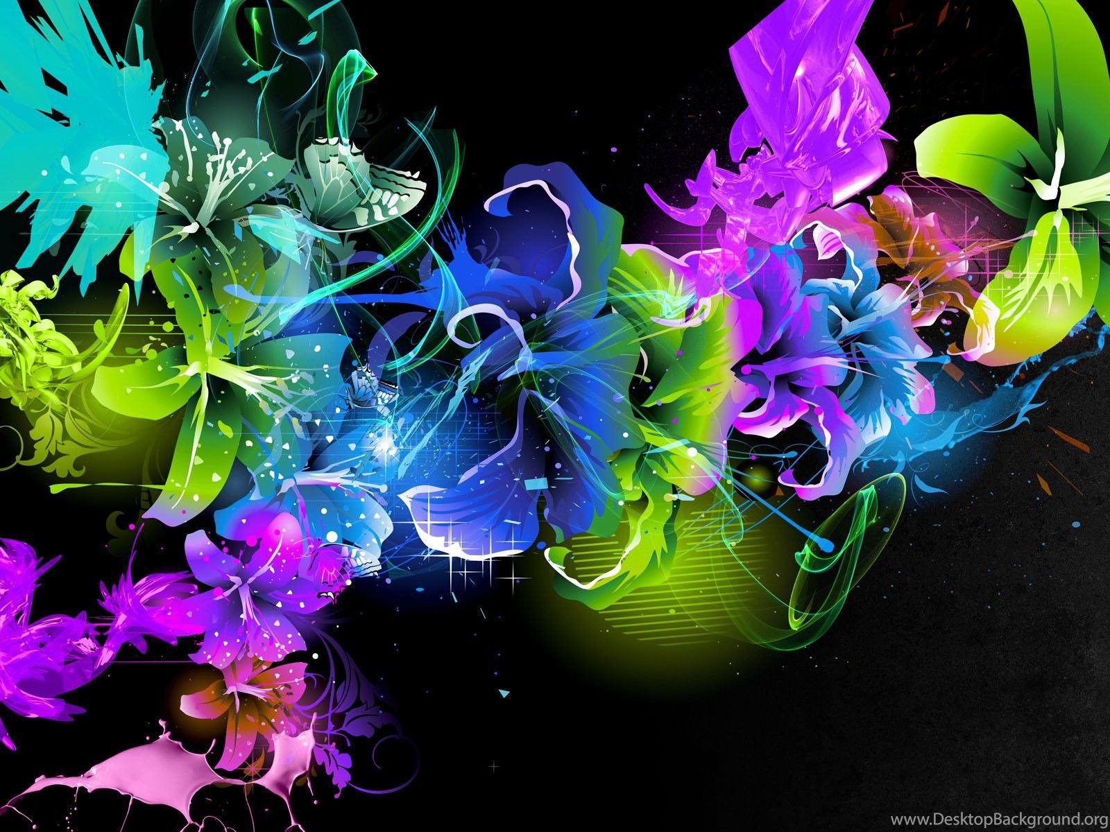 Free Colorful Flower Wallpaper Downloads: Colorful Flower Backgrounds Hd Backgrounds Desktop Background