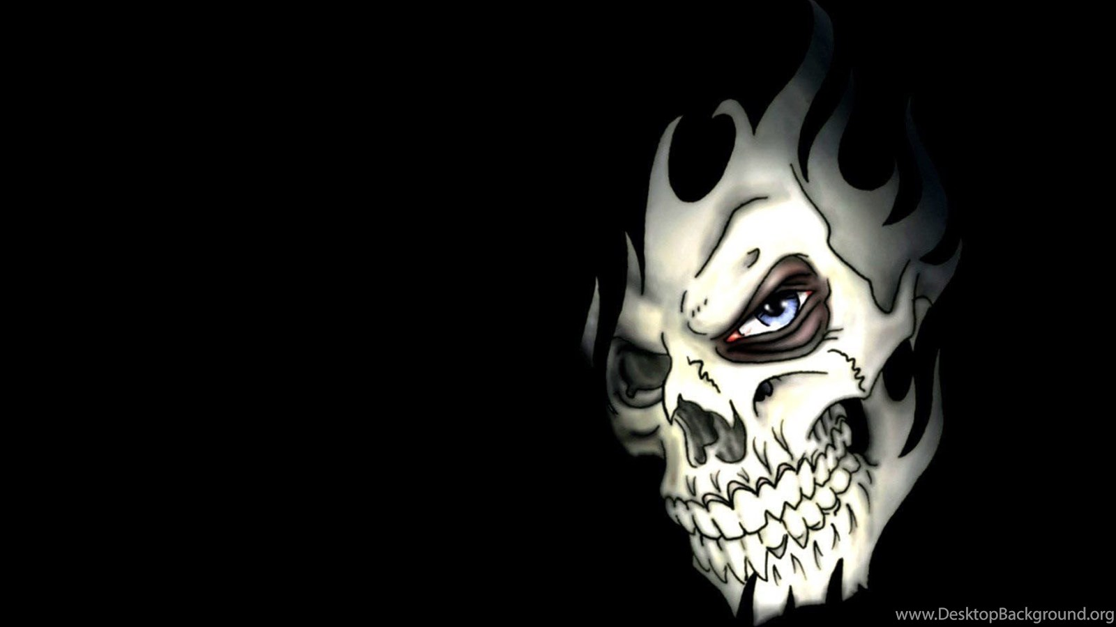 Skull Latest Hd Wallpapers Free Download Desktop Background