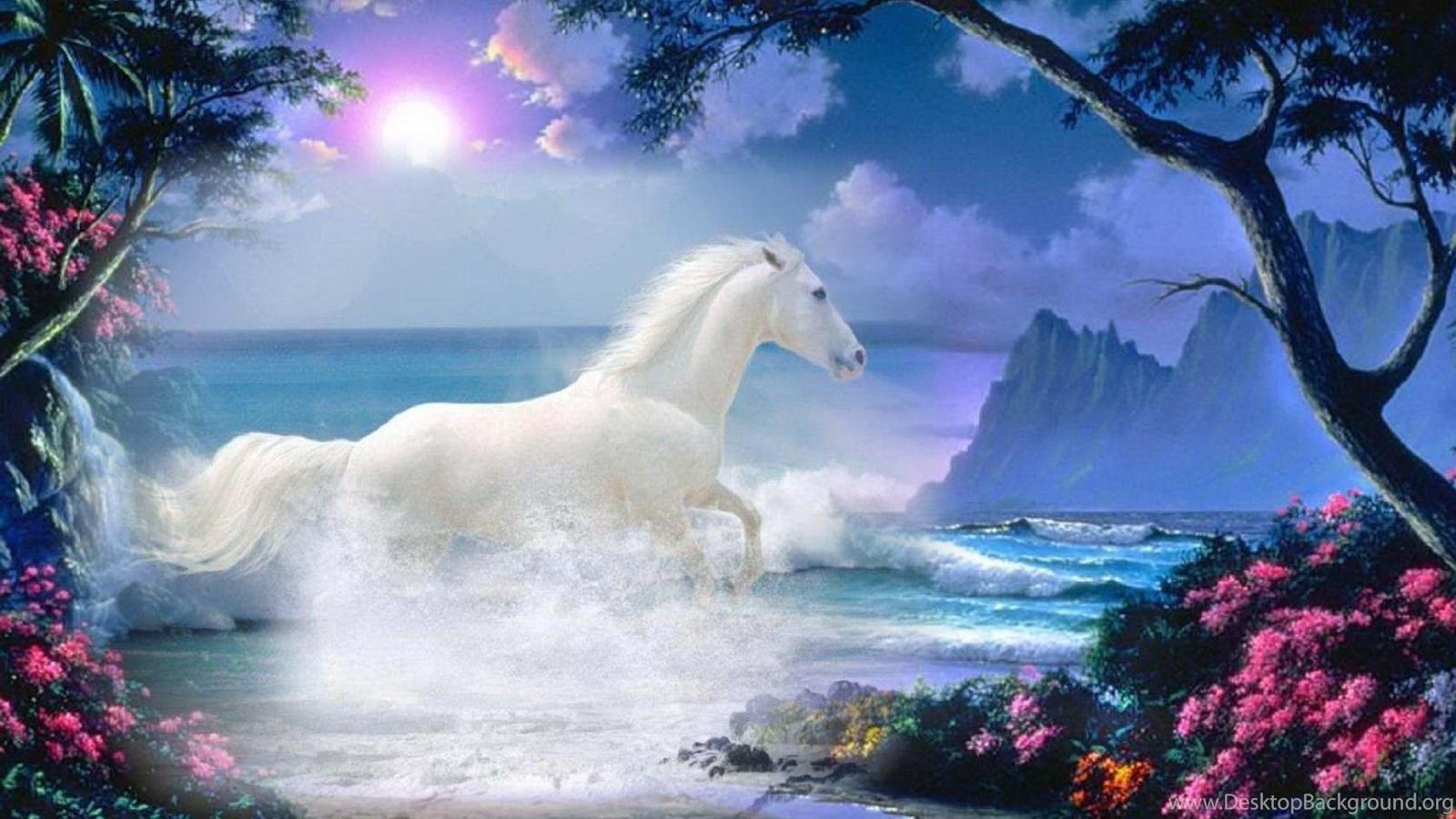 Beautiful White Horse Wallpaper Desktop Background