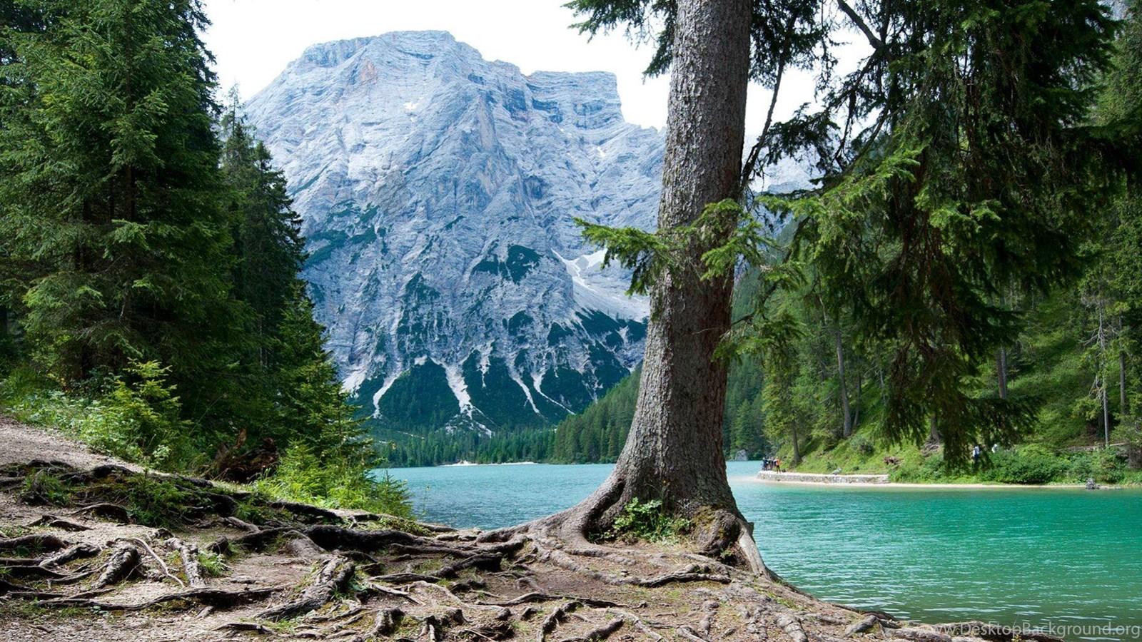 Nature dual screen wallpapers desktop background - Background pictures of nature for desktop ...
