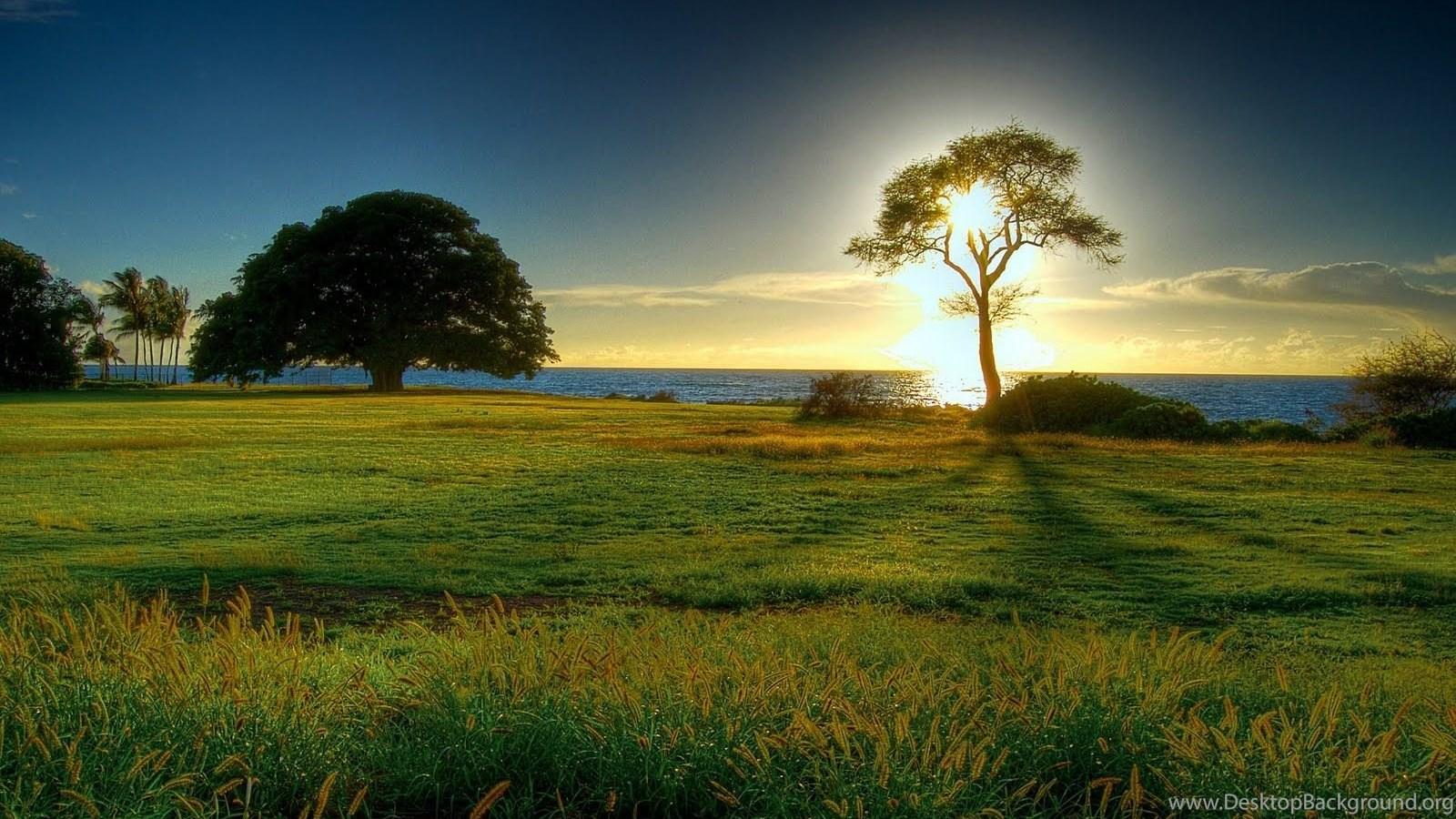 Sfondi desktop gratis sfondi pc windows 7 nature clip - Nature wallpaper free download windows 7 ...