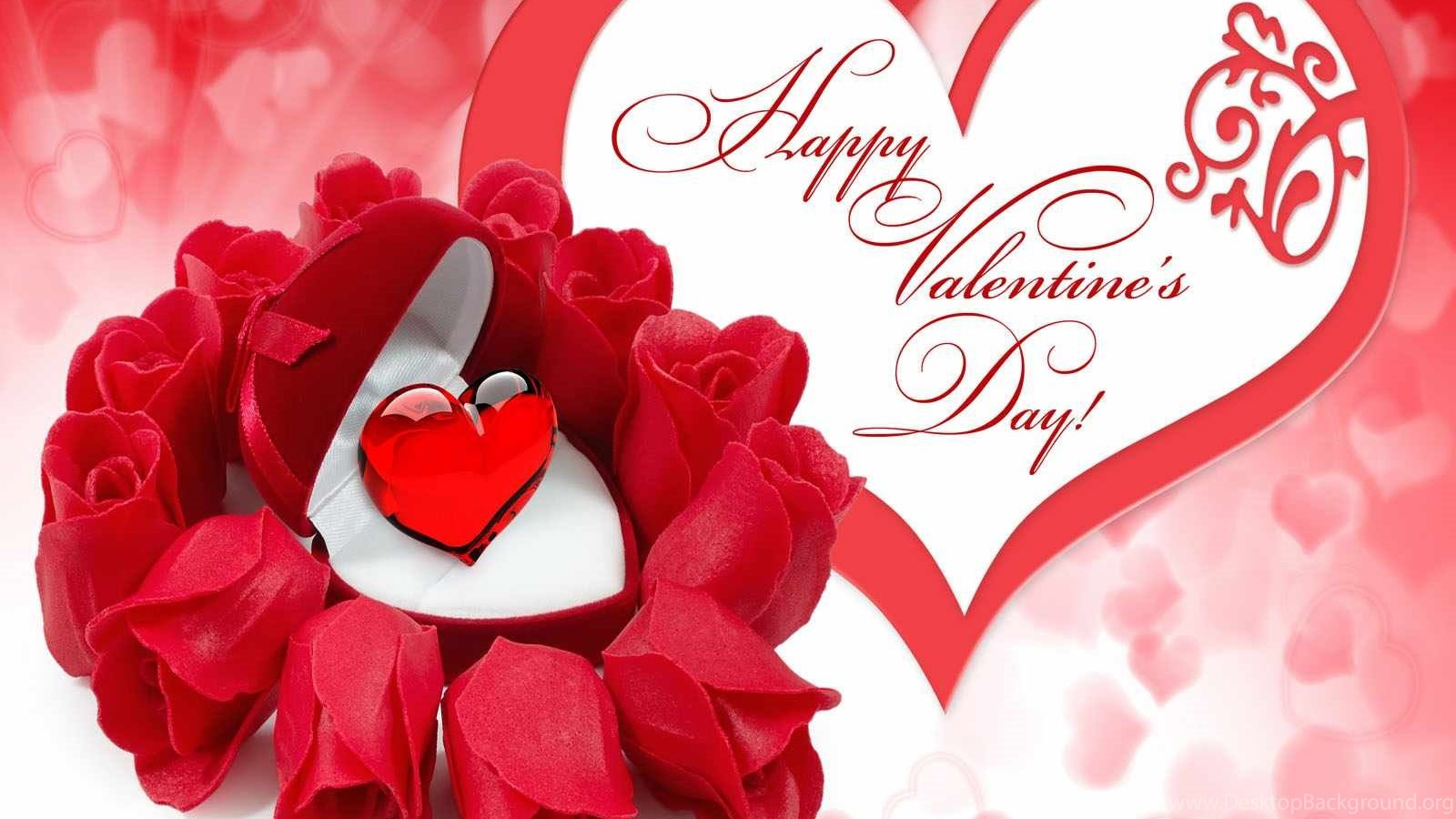 download best happy valentine day wallpapers for kids the qu