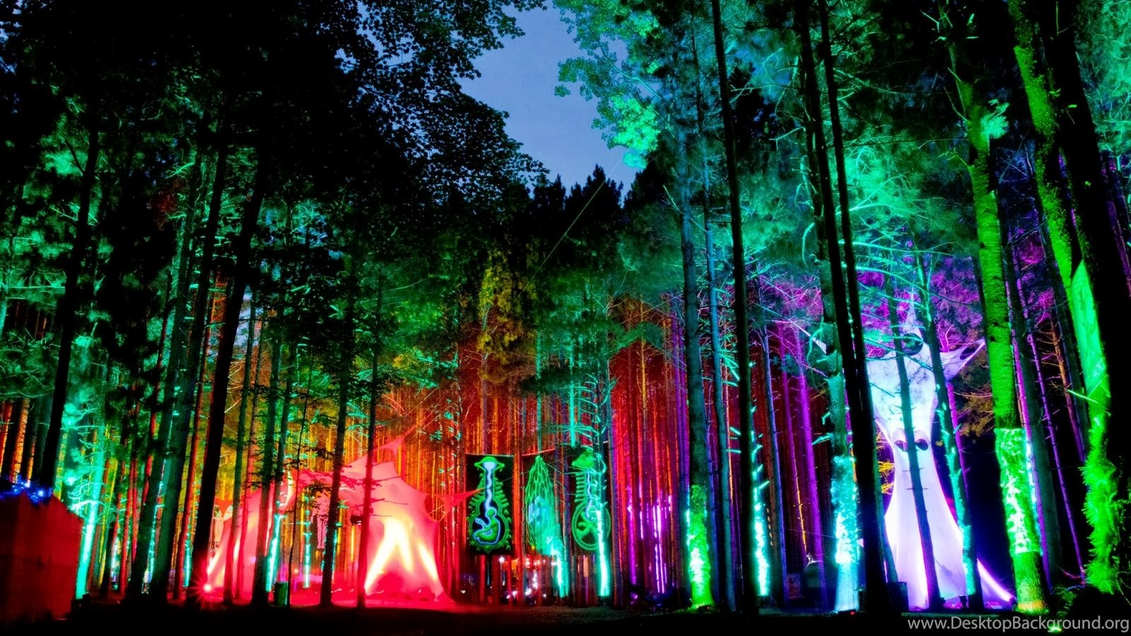 Electric Forest Hd Wallpapers Deep Hd Wallpapers For You Desktop Background