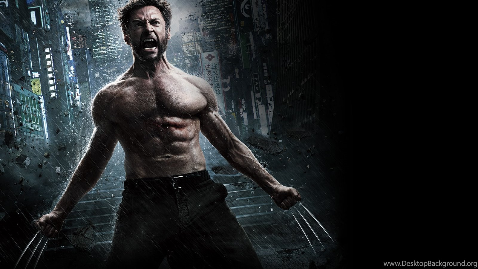 Simple Wallpaper High Resolution Wolverine - 721424_the-wolverine-hd-wallpapers_1600x1098_h  Perfect Image Reference_14394.jpg