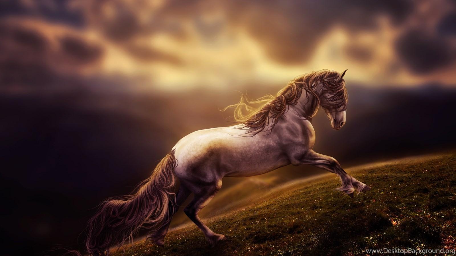 Running horse wallpaper desktop background