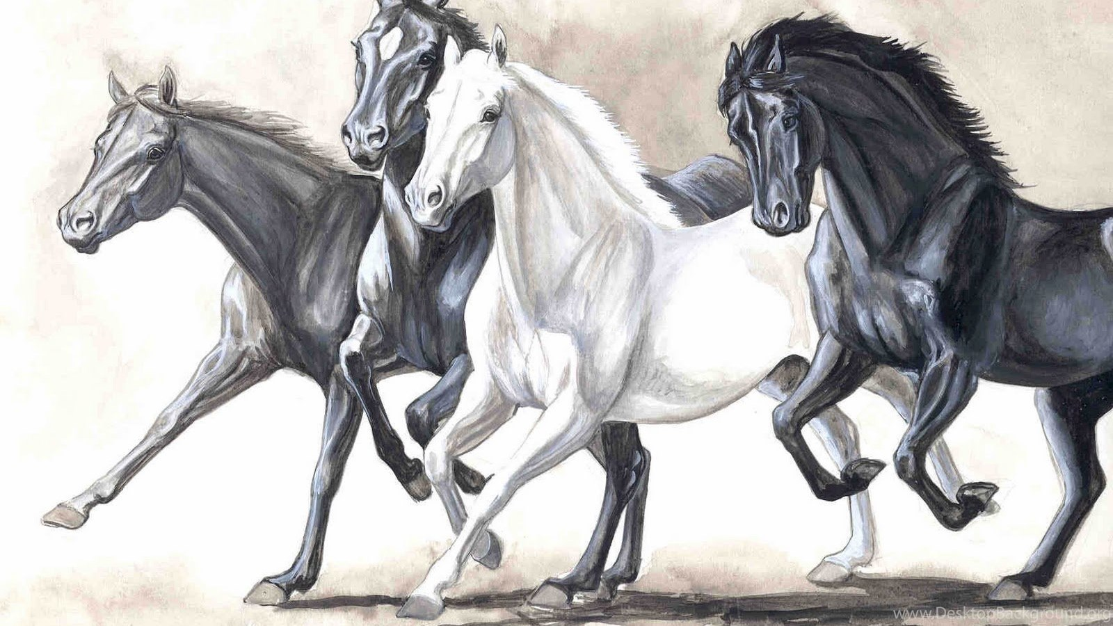 Free Download Art White Horse Painting Digital Horse Wallpapers 03 Desktop Background