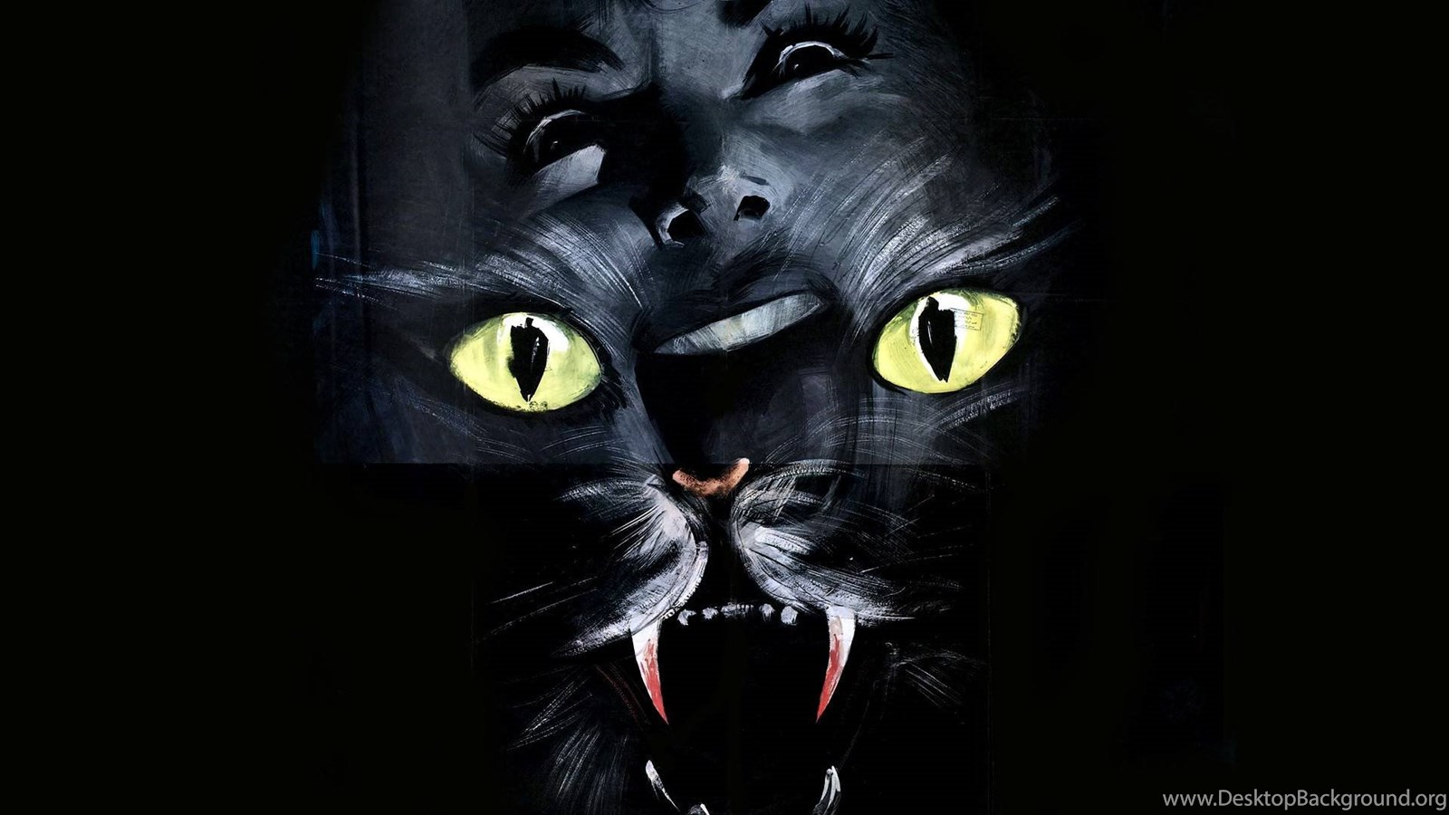 The Cat O Nine Tails Wallpaper Giallo Wallpapers Desktop Background