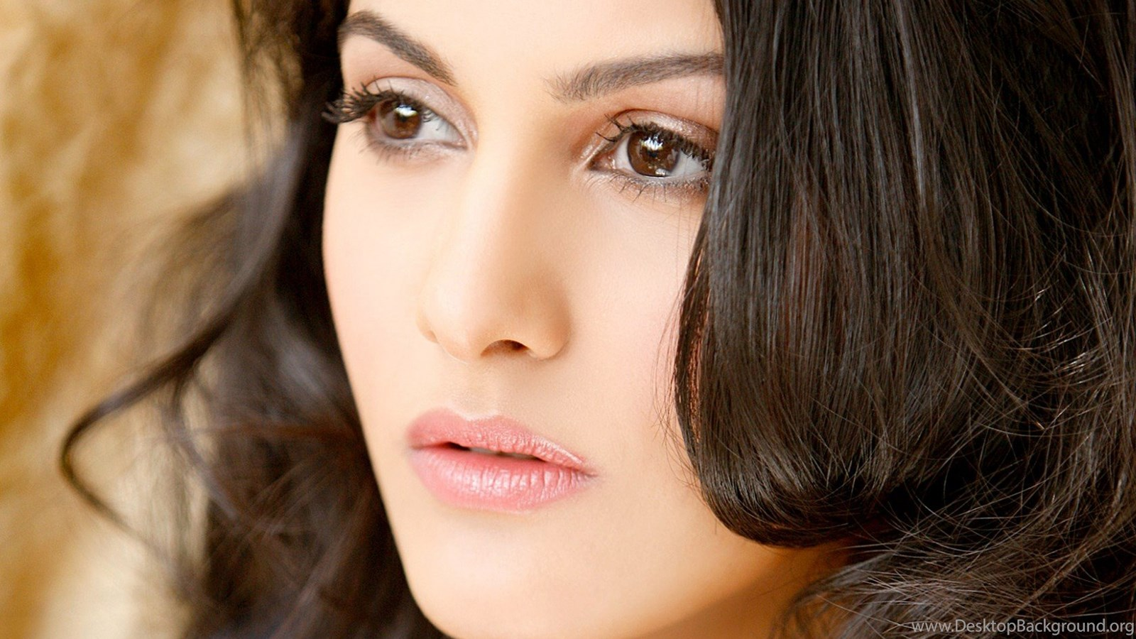 Amyra Dastur Face Wallpapers HD Download Of Indian Actress ...