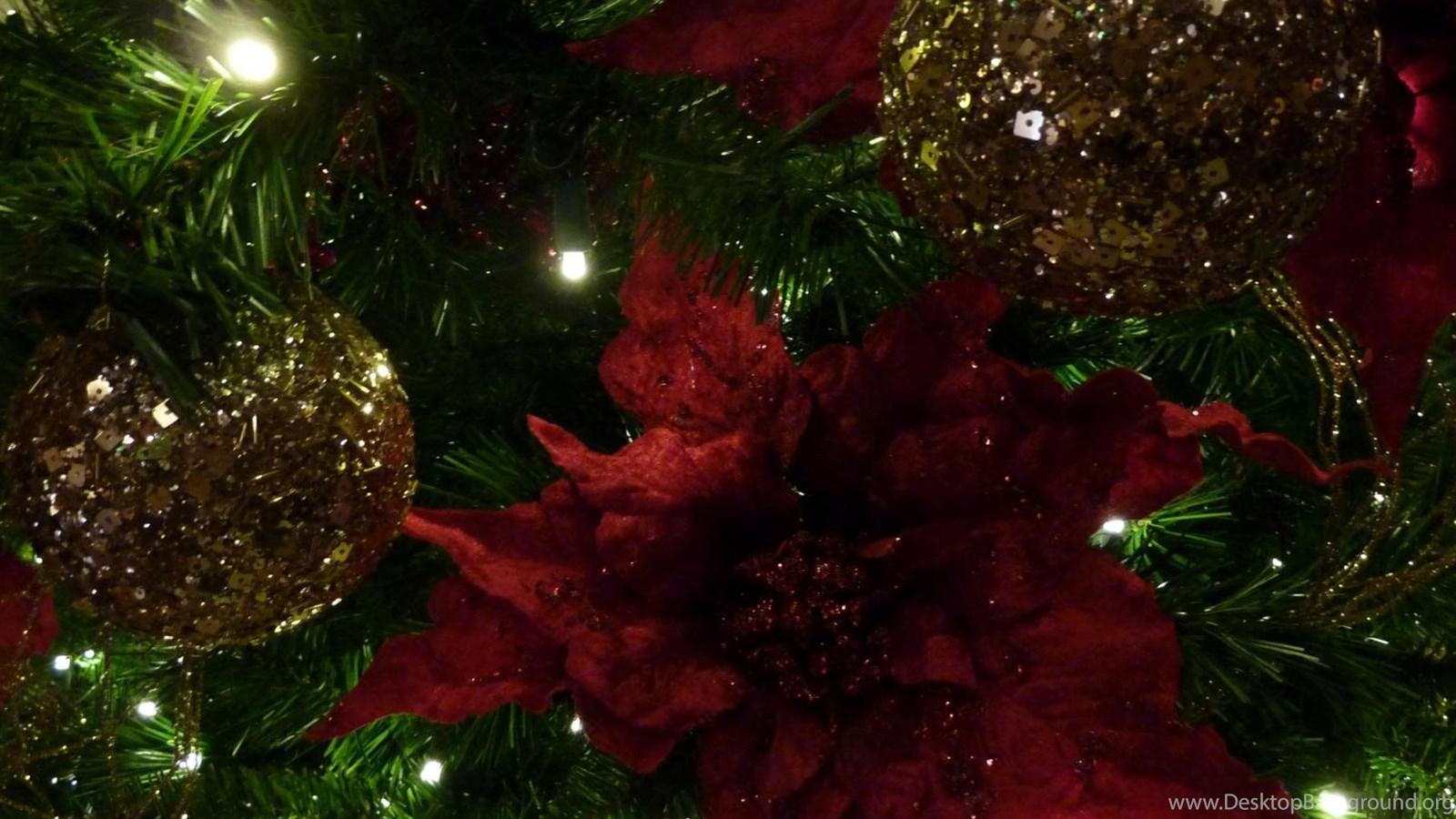Mlewallpapers Com Maroon And Gold Christmas Tree Desktop