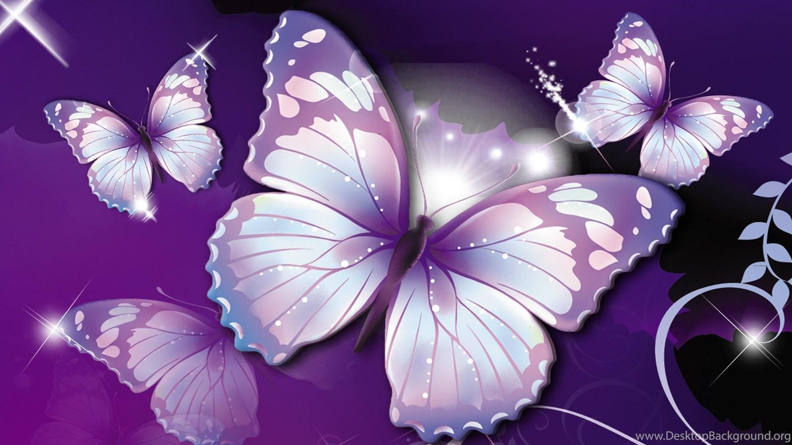 Beautiful Butterfly Desktop Wallpapers Free Hd Wallpapers Desktop