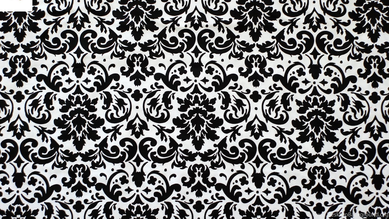 White And Black Damask Wallpapers Zone Desktop Background