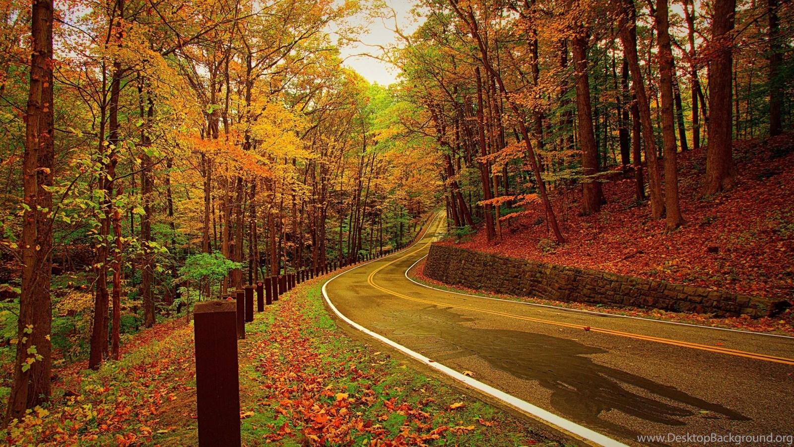 Hd Wallpapers 1080p Wallpapers Full Hd 1080p 1920x1080: Full HD 1080p Autumn Wallpapers HD, Desktop Backgrounds