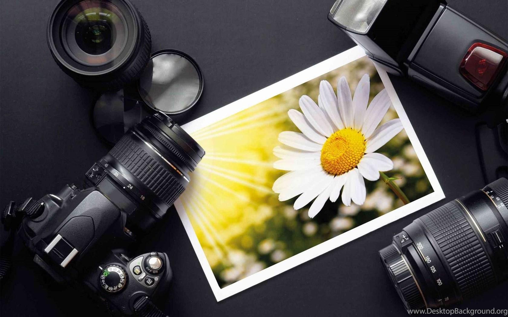 рецептов бизнес план для начинающего фотографа какой кружок