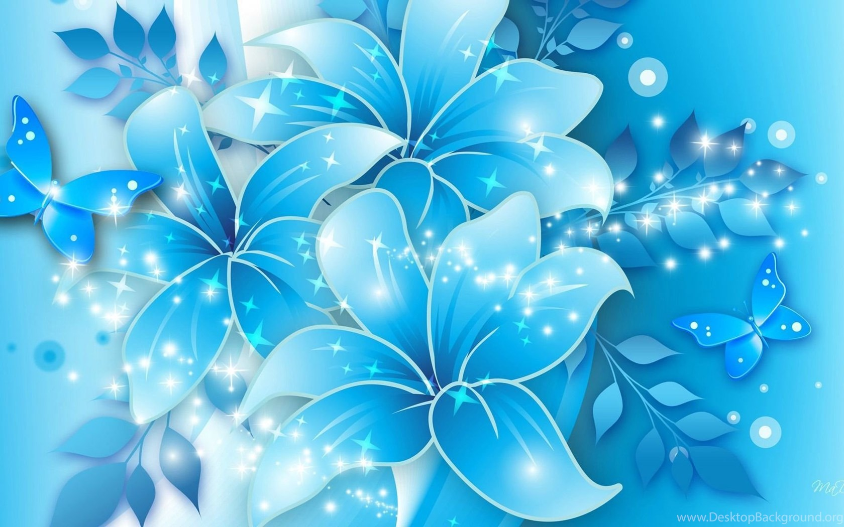 Light Blue Flowers Wallpapers Funny And Amazing Wallpapers Desktop