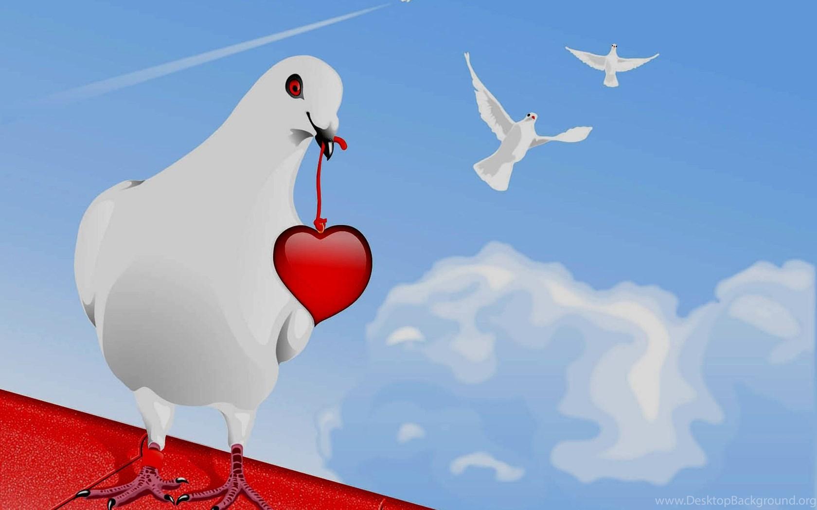 Top Wallpaper High Quality Bird - 275878_3d-wallpapers-hd-3d-heart-with-lovely-bird-wallpapers-high-quality_1900x1386_h  Snapshot_873846.jpg