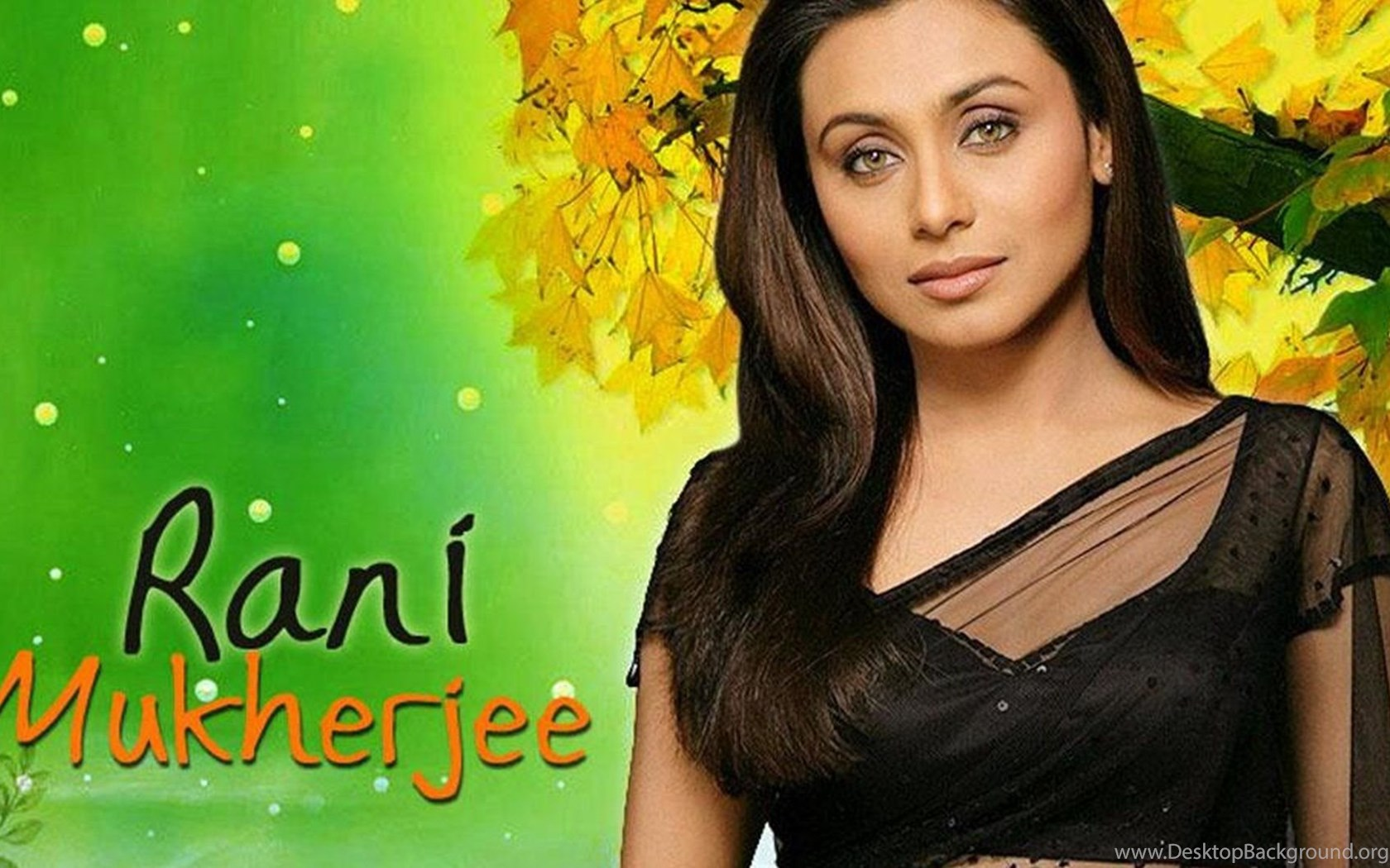 rani mukerji full hd wallpapers desktop background