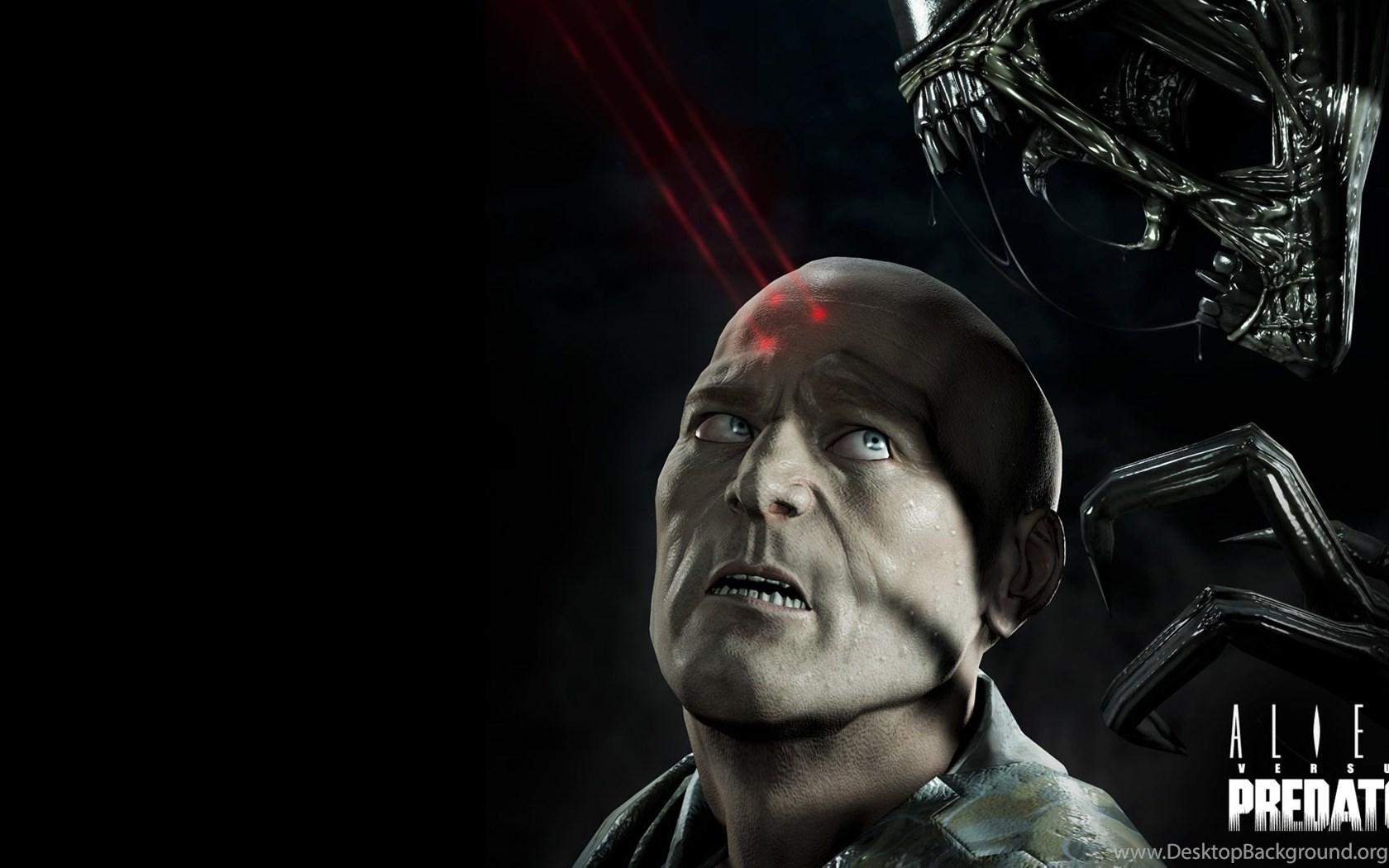 1 Avp Alien Vs Predator Hd Wallpapers Desktop Background