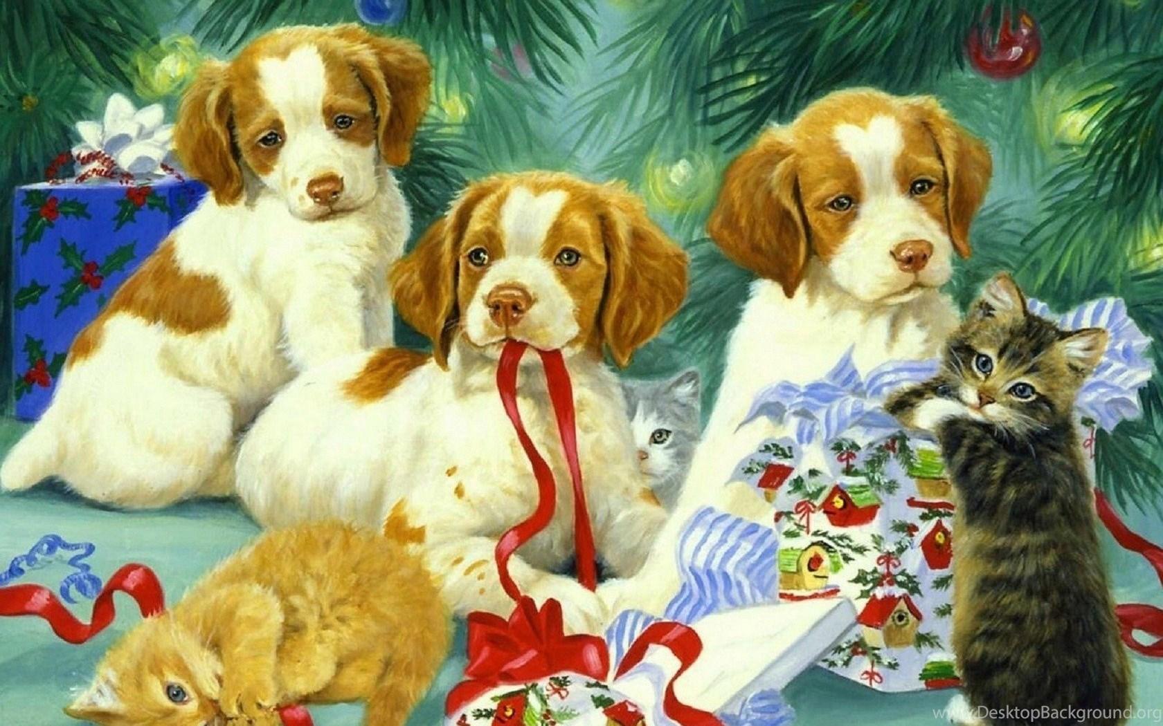 Прованс, открытка с собаками на новый год